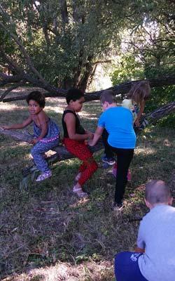 Fáramászás a battai ovis táborban