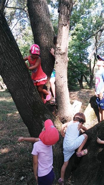 nyári tábor, Százhalombatta
